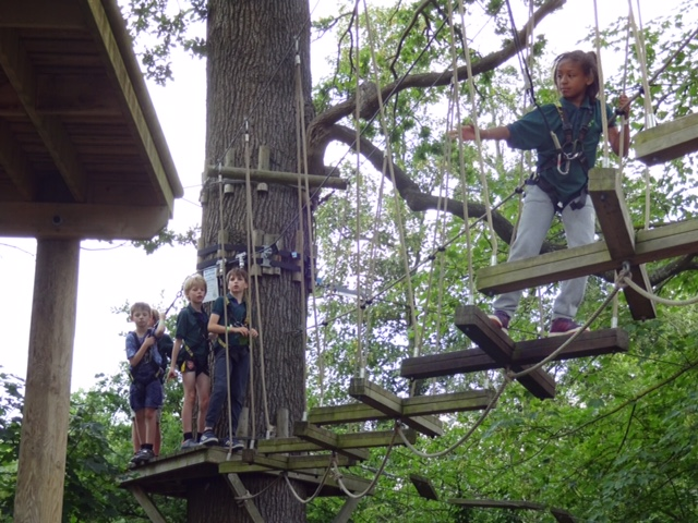 Tree Top Traverse